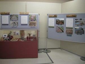 展示状況の写真