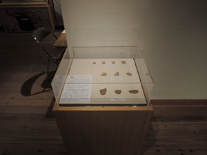 大室古墳館内の企画展示(176号墳)
