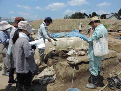 小島・柳原遺跡群の遺構の説明を聞く職員