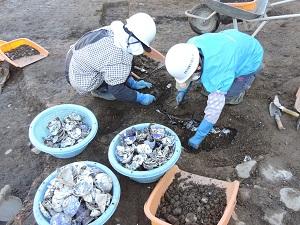 遺構を掘って碗や皿などたくさんの出土品を取り上げる様子