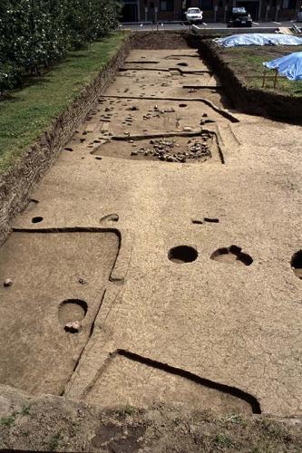 住居跡や柱穴などのすべての遺構を掘り終えた状態の調査区全体を撮影した写真