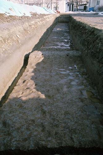 細長い調査区の中にあぜが直交するようにのびています。水田面には足跡の凹凸がたくさん残されています。